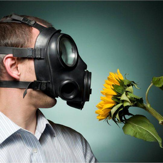 http://www.allergymedik.com/wp-content/uploads/2016/05/hay-fever-540x540.jpg